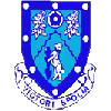 Logo Rugby Town