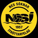 Logo NSÍ